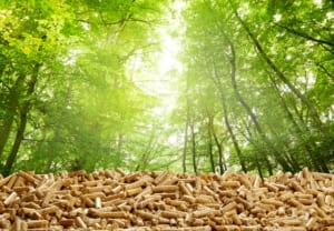 Layer of organic wood pellets in a green forest